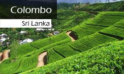 571 hotels in Colombo